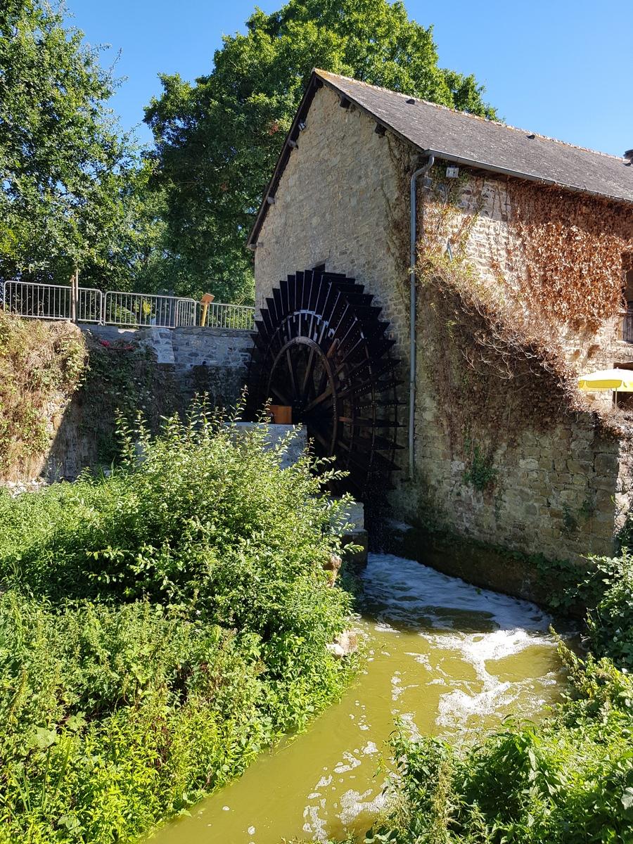 hydroélectricité respect de l'environnement